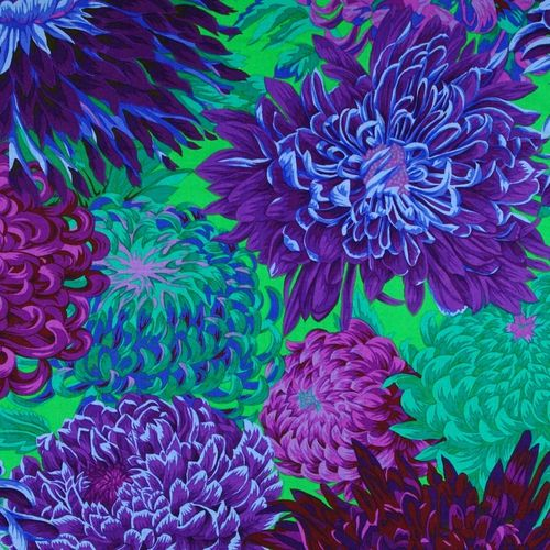 Japanese Chrysanthemum Purple